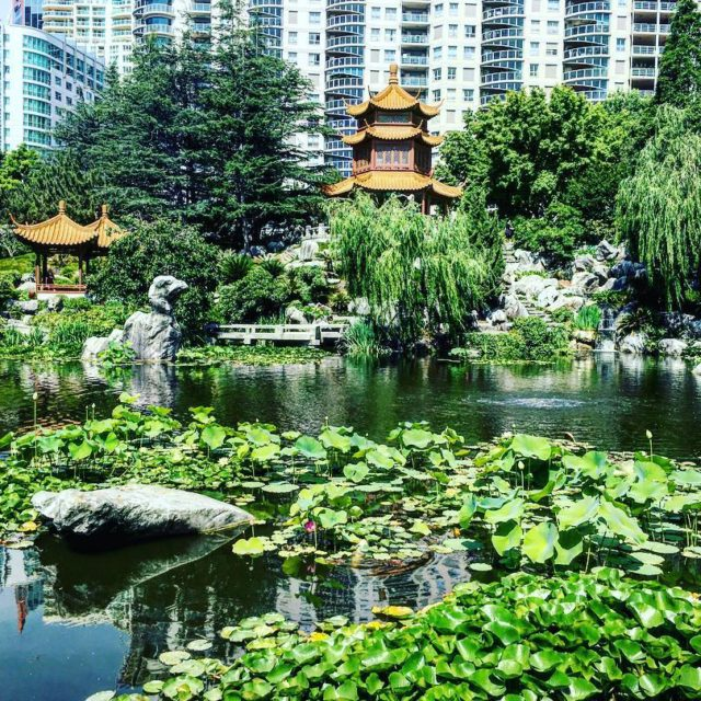 The Chinese Gardens of Friendship sydney